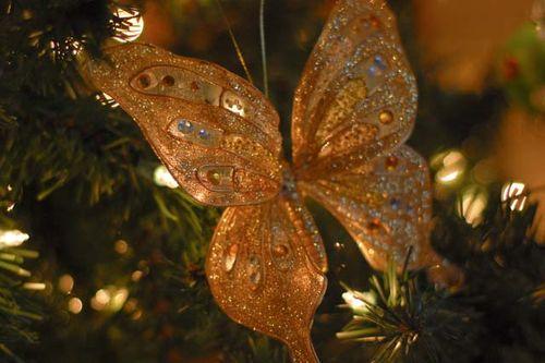 Christmas08 019_edited-2